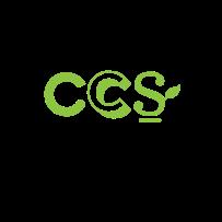 ccs-01
